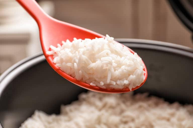 Rice Cooker terbaik
